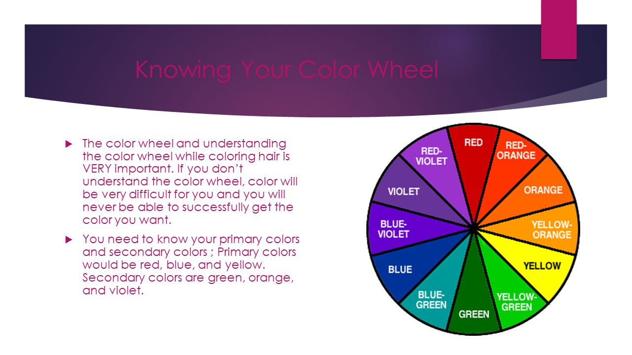 Color 101 Olivia Warren Color 101 The Most Important Thing About