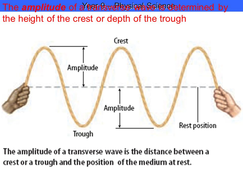 Year 9 – Physical Science Year 9 – Physical Science The amplitude of a transverse wave is determined by the height of the crest or depth of the trough
