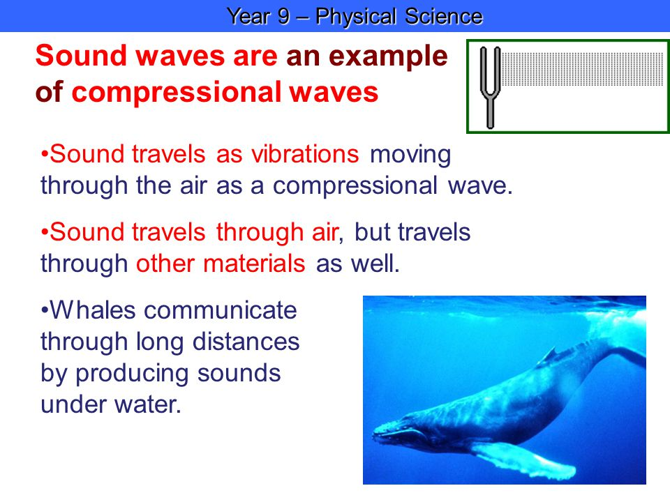 Year 9 – Physical Science Year 9 – Physical Science Sound waves are an example of compressional waves Sound travels as vibrations moving through the air as a compressional wave.
