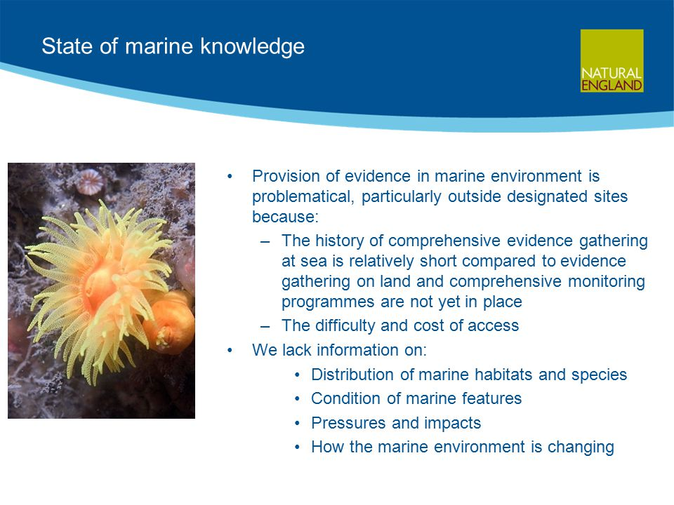 State of marine knowledge Provision of evidence in marine environment is problematical, particularly outside designated sites because: –The history of comprehensive evidence gathering at sea is relatively short compared to evidence gathering on land and comprehensive monitoring programmes are not yet in place –The difficulty and cost of access We lack information on: Distribution of marine habitats and species Condition of marine features Pressures and impacts How the marine environment is changing