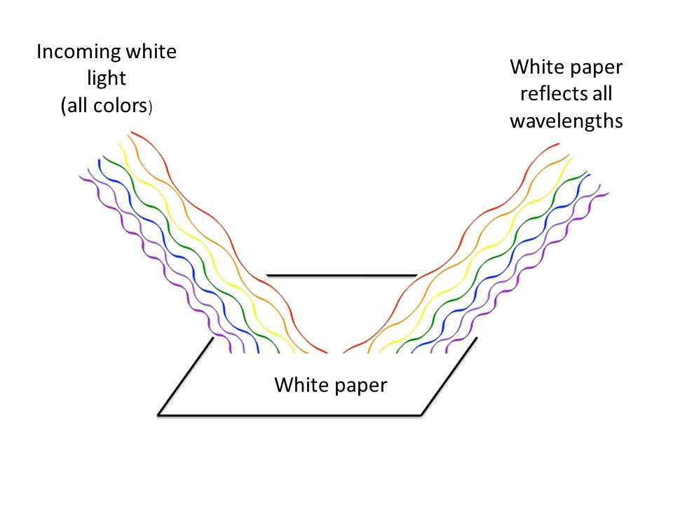 White paper White paper reflects all wavelengths Incoming white light (all colors )