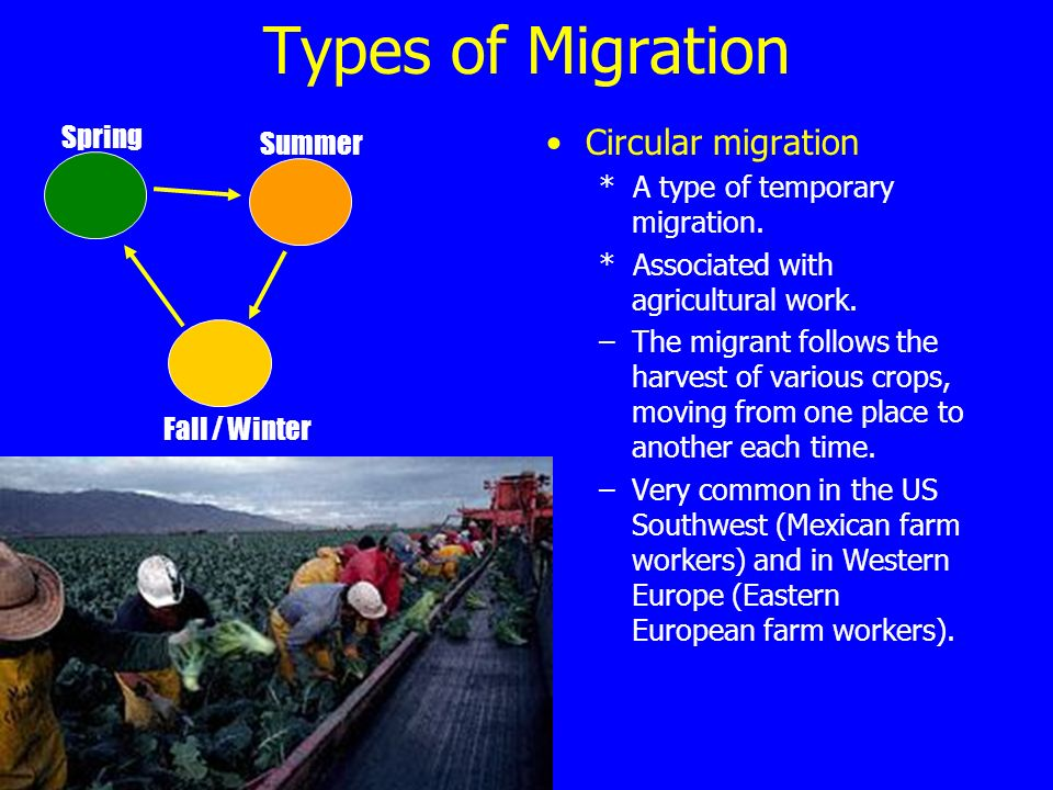 Types of Migration Circular migration * A type of temporary migration.