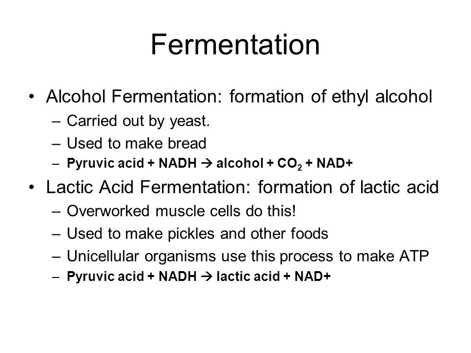 Fermentation Alcohol Fermentation: formation of ethyl alcohol –Carried out by yeast.