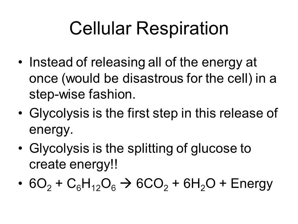 Cellular Respiration Instead of releasing all of the energy at once (would be disastrous for the cell) in a step-wise fashion.