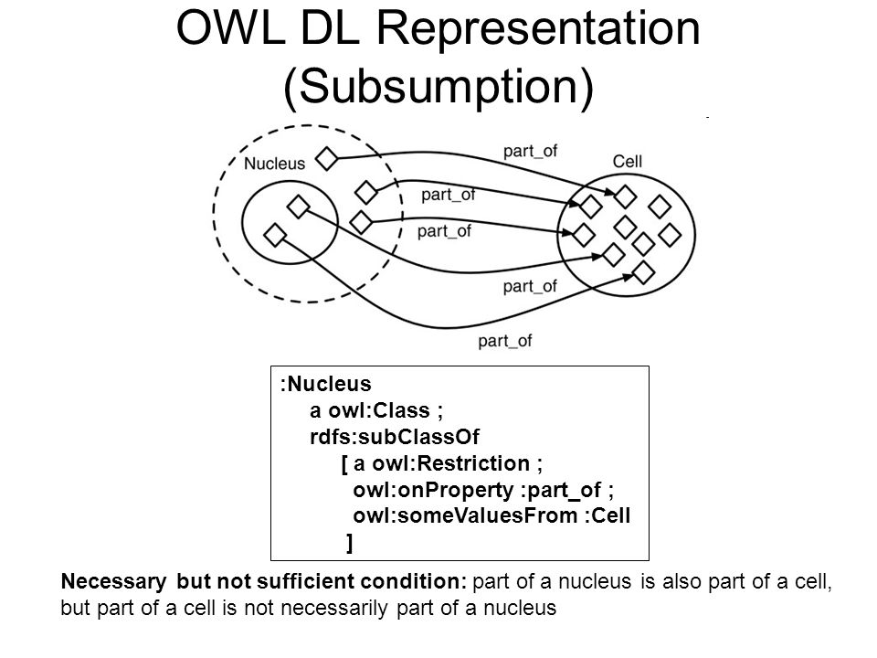 OWL DL Representation (Subsumption) :Nucleus a owl:Class ; rdfs:subClassOf [ a owl:Restriction ; owl:onProperty :part_of ; owl:someValuesFrom :Cell ] Necessary but not sufficient condition: part of a nucleus is also part of a cell, but part of a cell is not necessarily part of a nucleus