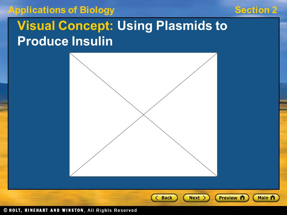 Applications of BiologySection 2 Visual Concept: Using Plasmids to Produce Insulin