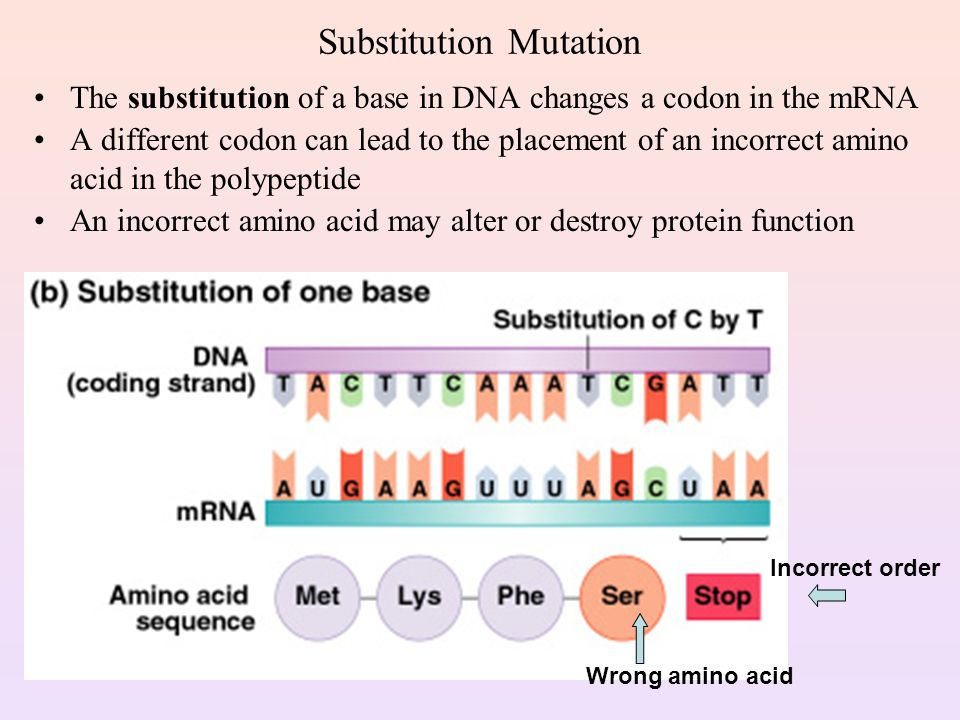 in general why might a change in amino acid sequence affect protein function Acid change in the corresponding protein sequence if single amino acid substitutions can affect protein function and play a role in disease, then the insertion/deletion of amino acid(s) could also in general, 3n indels affect the local environment surrounding the mutation, while frameshifting indels.