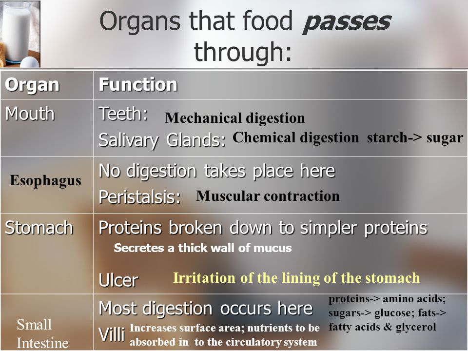 Digestive System: _______________ food into useable substances (____________) _______________ food into useable substances (____________) Two types: Two types: 1.