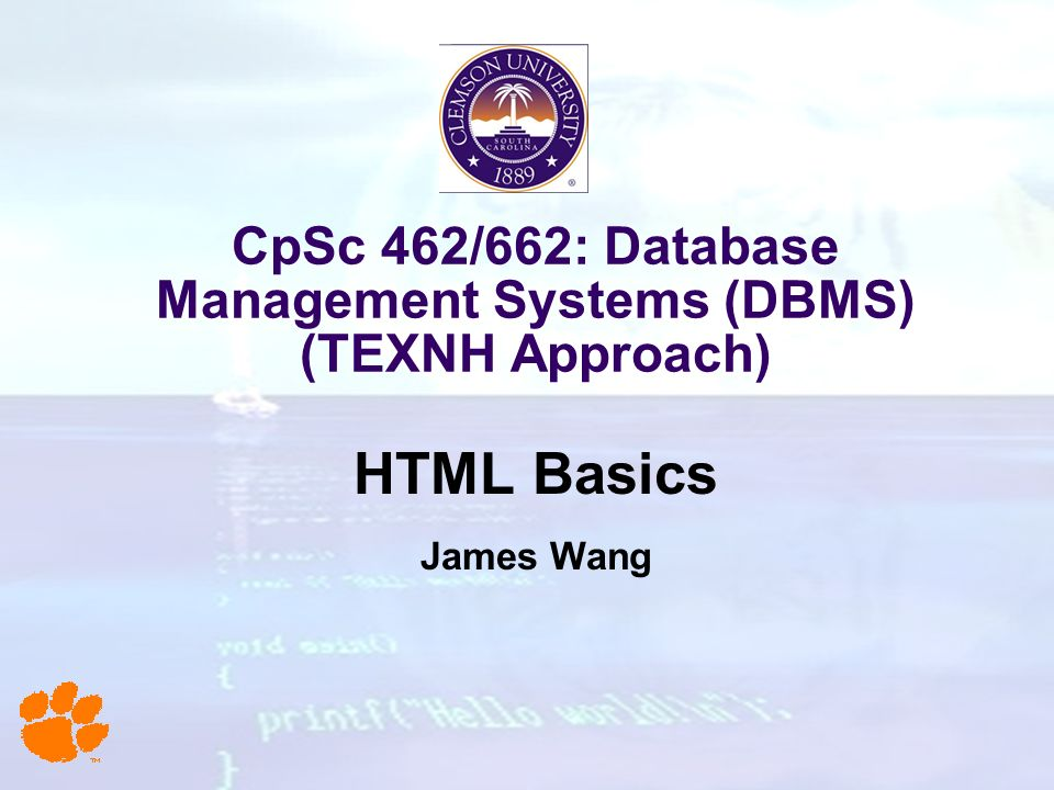 CpSc 462/662: Database Management Systems (DBMS) (TEXNH Approach) HTML Basics James Wang