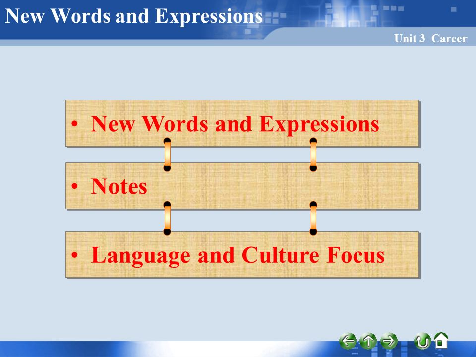 Unit 3 Career New Words and Expressions Notes Language and Culture Focus New Words and Expressions
