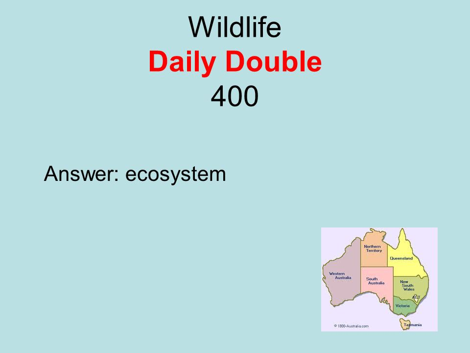 Wildlife Daily Double 400 Answer: ecosystem