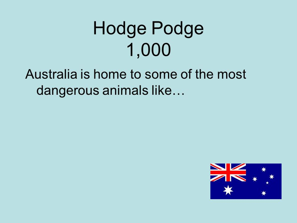 Hodge Podge 1,000 Australia is home to some of the most dangerous animals like…