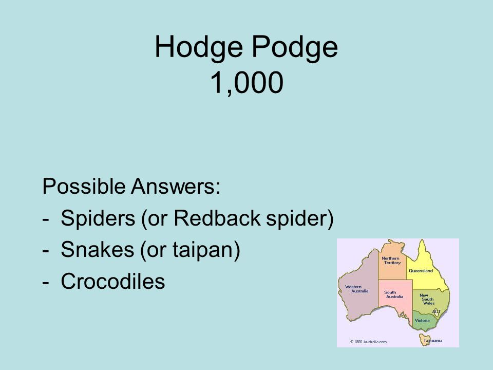 Hodge Podge 1,000 Possible Answers: -Spiders (or Redback spider) -Snakes (or taipan) -Crocodiles