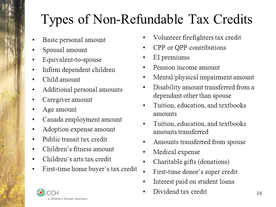 16 Types Of Non Refundable Tax Credits Basic Personal Amount Spousal Equivalent To Spouse Infirm Dependent Children Child Additional