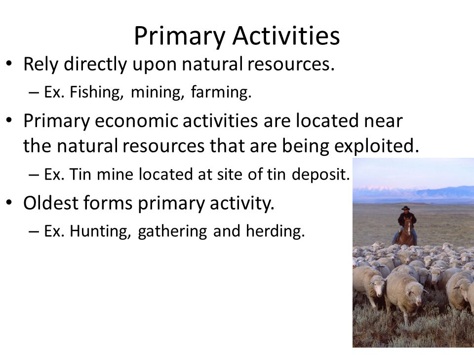 Primary Activities Rely directly upon natural resources.