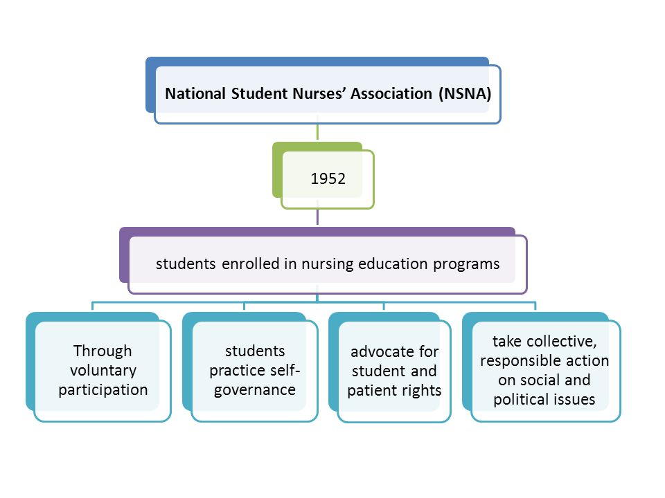 National Student Nurses' Association (NSNA)1952students enrolled in nursing education programs Through voluntary participation students practice self- governance advocate for student and patient rights take collective, responsible action on social and political issues
