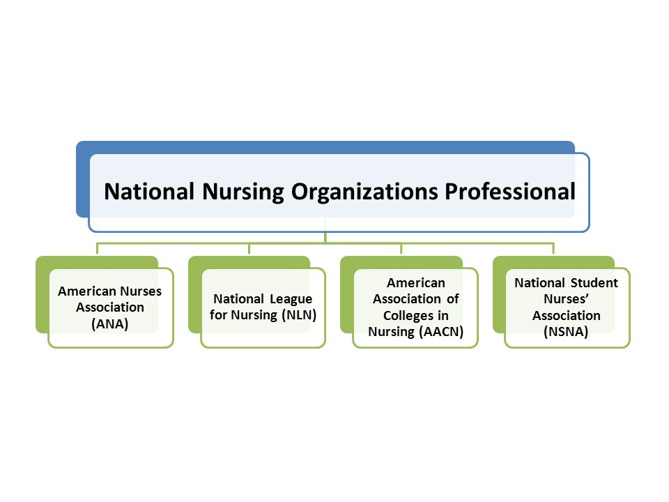 National Nursing Organizations Professional American Nurses Association (ANA) National League for Nursing (NLN) American Association of Colleges in Nursing (AACN) National Student Nurses' Association (NSNA)