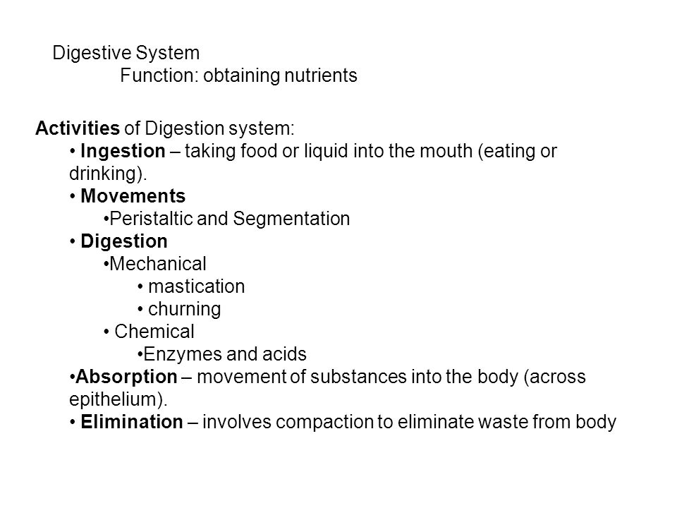 Digestive System Function: obtaining nutrients Activities of Digestion system: Ingestion – taking food or liquid into the mouth (eating or drinking).
