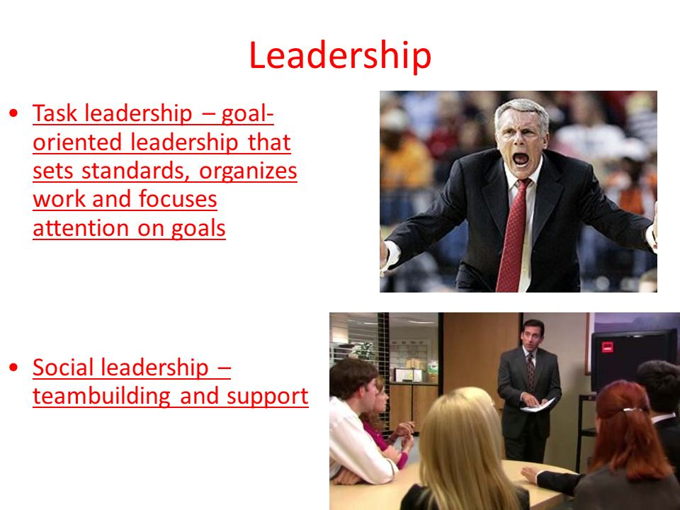 Leadership Task leadership – goal- oriented leadership that sets standards, organizes work and focuses attention on goals Social leadership – teambuilding and support
