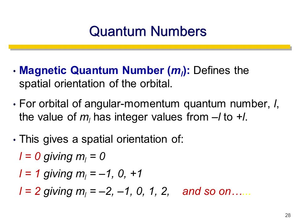 28 Quantum Numbers Magnetic Quantum Number (m l ): Defines the spatial orientation of the orbital.