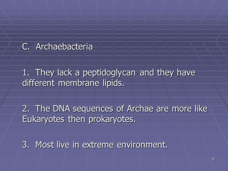 6 C. Archaebacteria 1. They lack a peptidoglycan and they have different membrane lipids.