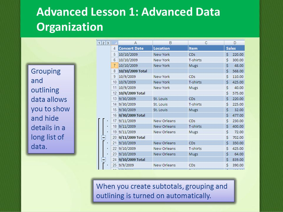 Advanced Lesson 1 Advanced Data Organization In Excel 2007 You Can