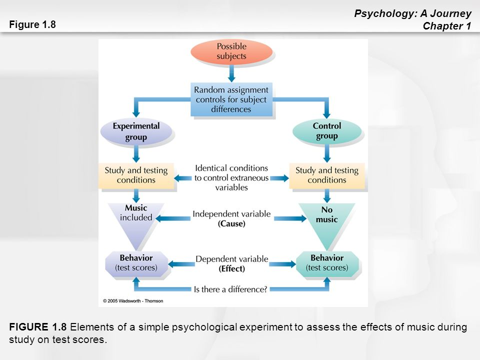 effects of optimism on psychological and Optimism and psychological health evidence suggests that optimism is important in coping with difficult life events countless studies have been conducted on optimism, and the vast majority of them support the same conclusions: optimism is healthy.