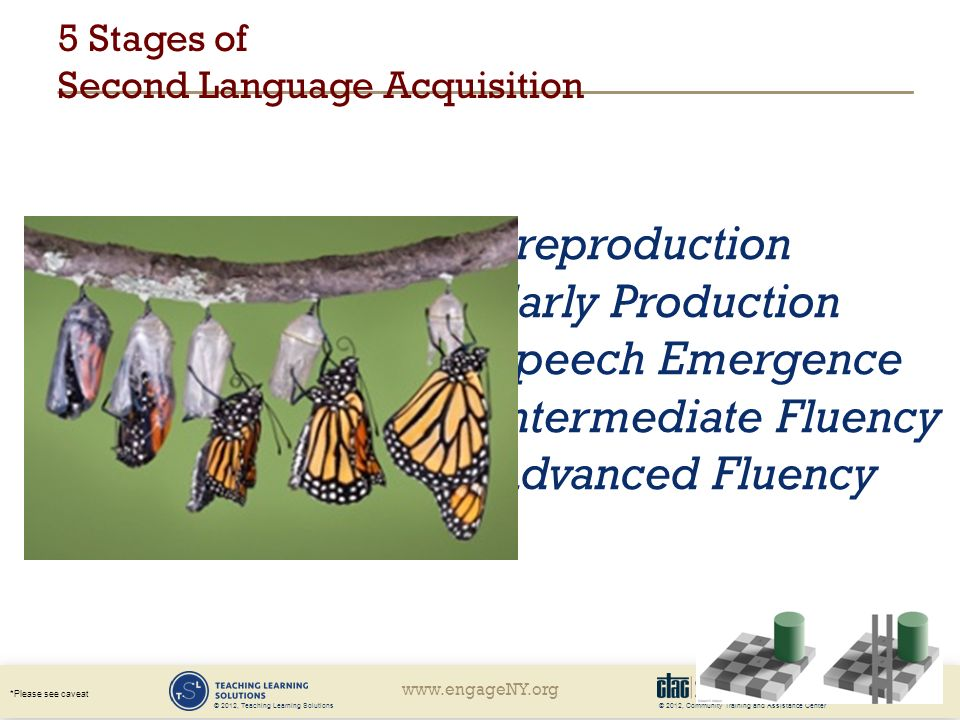 © 2012, Community Training and Assistance Center *Please see caveat © 2012, Teaching Learning Solutions 5 Stages of Second Language Acquisition Preproduction Early Production Speech Emergence Intermediate Fluency Advanced Fluency