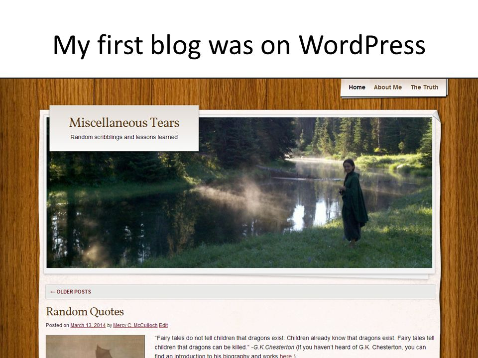 My first blog was on WordPress