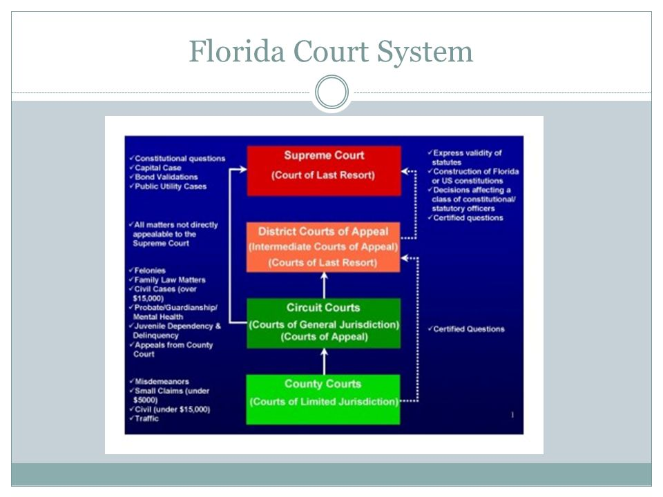 Florida Court System