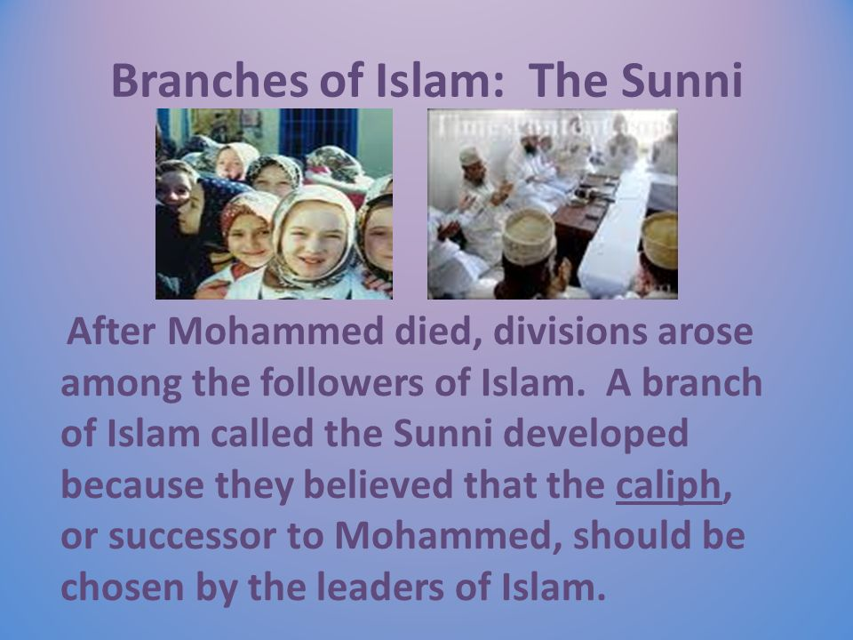 Branches of Islam: The Sunni After Mohammed died, divisions arose among the followers of Islam.