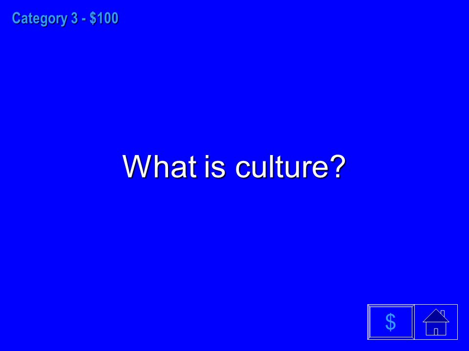 Category 3 - $100 What is culture $