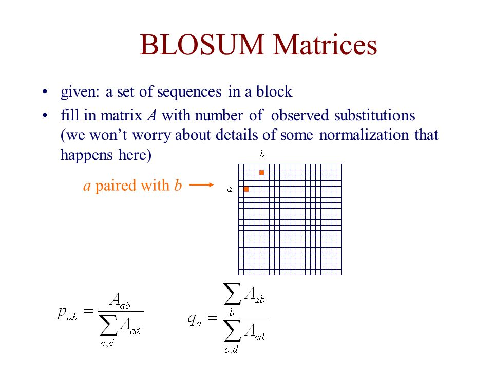 BLOSUM Matrices given: a set of sequences in a block fill in matrix A with number of observed substitutions (we won't worry about details of some normalization that happens here) a paired with b