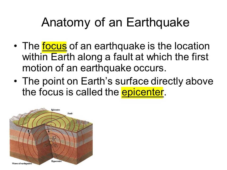 By Serena Tamkina And Olivia Q What Is An Earthquake