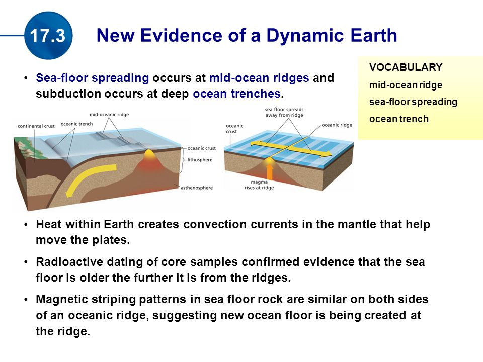 Sea-floor spreading occurs at mid-ocean ridges and subduction occurs at deep ocean trenches.