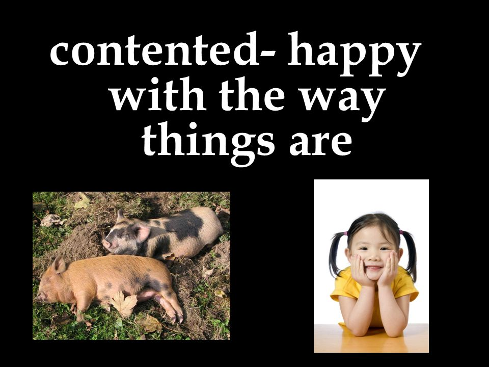 contented- happy with the way things are