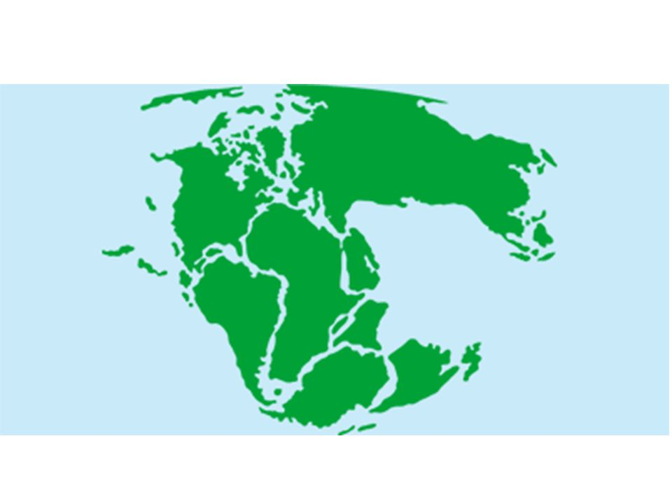 Has the continents always looked as they do now on the map or have 10 fossil evidence fossil the remains of an animal or plant preserved from an earlier era inside a rock or geological deposit often as an impression or gumiabroncs Images