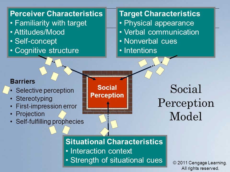 Social Perception Model Social Perception Target Characteristics Physical appearance Verbal communication Nonverbal cues Intentions Perceiver Characteristics Familiarity with target Attitudes/Mood Self-concept Cognitive structure Situational Characteristics Interaction context Strength of situational cues Barriers Selective perception Stereotyping First-impression error Projection Self-fulfilling prophecies © 2011 Cengage Learning.