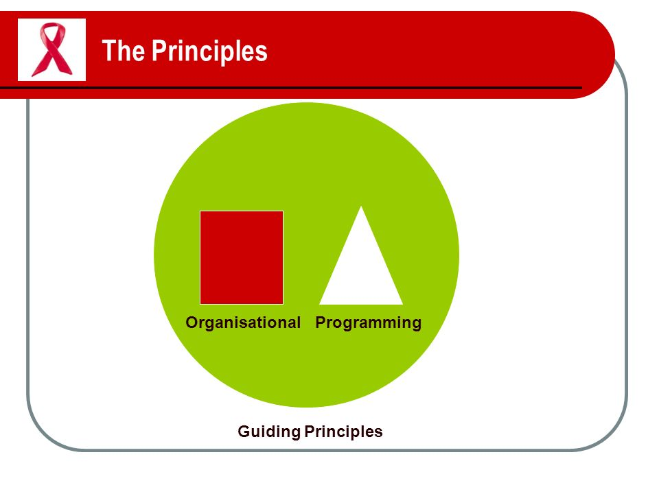 The Principles Guiding Principles OrganisationalProgramming