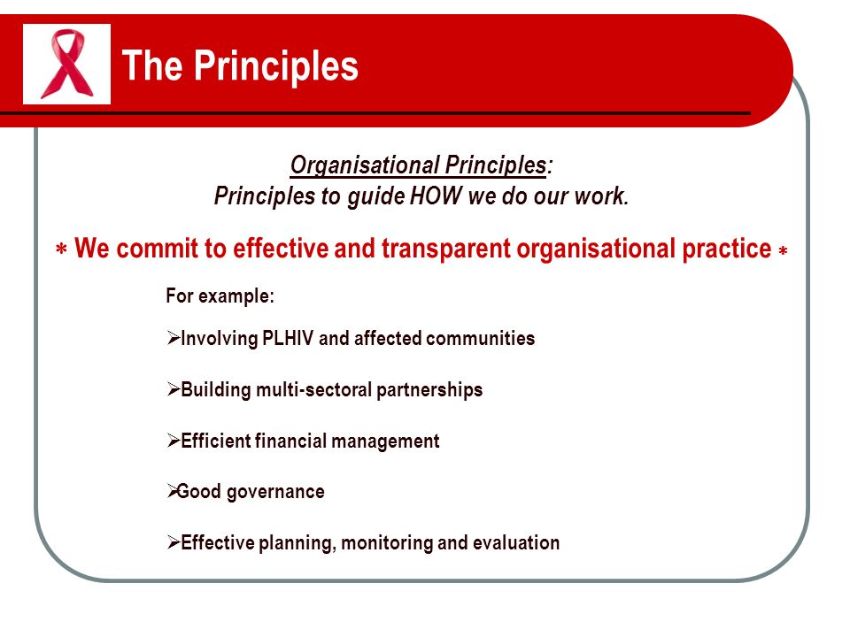 The Principles Organisational Principles: Principles to guide HOW we do our work.