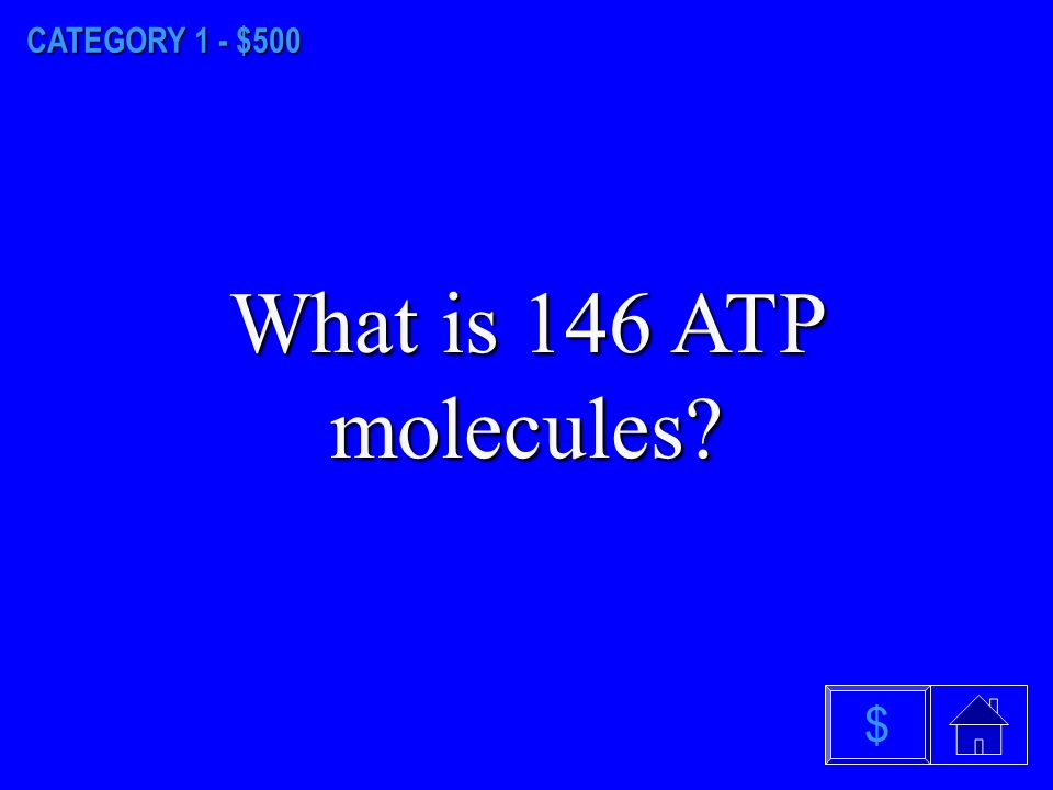 CATEGORY 1 - $400 What are lipids $