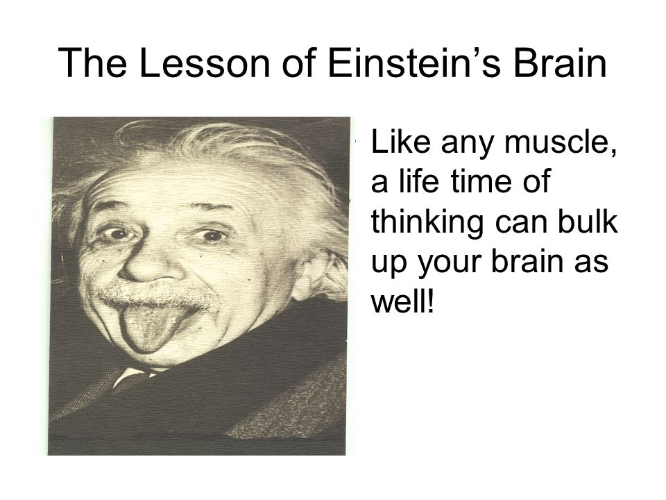 The Lesson of Einstein's Brain Like any muscle, a life time of thinking can bulk up your brain as well!