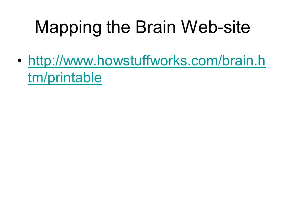 Mapping the Brain Web-site   tm/printablehttp://  tm/printable