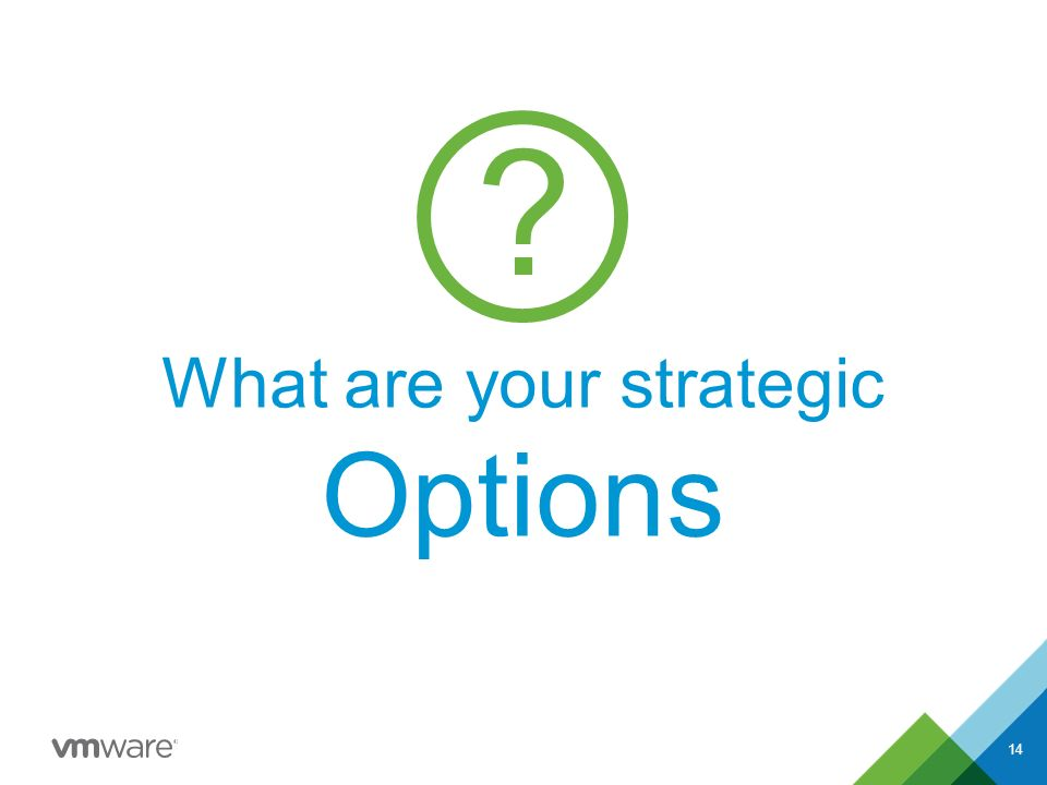 14 What are your strategic Options