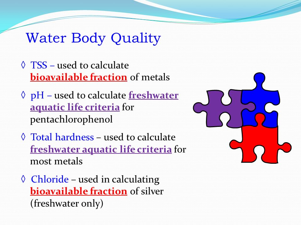 Water Body Quality ◊ TSS – used to calculate bioavailable fraction of metals ◊ pH – used to calculate freshwater aquatic life criteria for pentachlorophenol ◊ Total hardness – used to calculate freshwater aquatic life criteria for most metals ◊ Chloride – used in calculating bioavailable fraction of silver (freshwater only) Water Body Quality TSS – used to calculate bioavailable fraction of metals pH – used to calculate freshwater aquatic life criteria for pentachlorophenol Total hardness – used to calculate freshwater aquatic life criteria for most metals Chloride – used in calculating bioavailable fraction of silver (freshwater only)