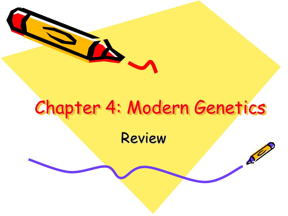 Chapter 4: Modern Genetics Review