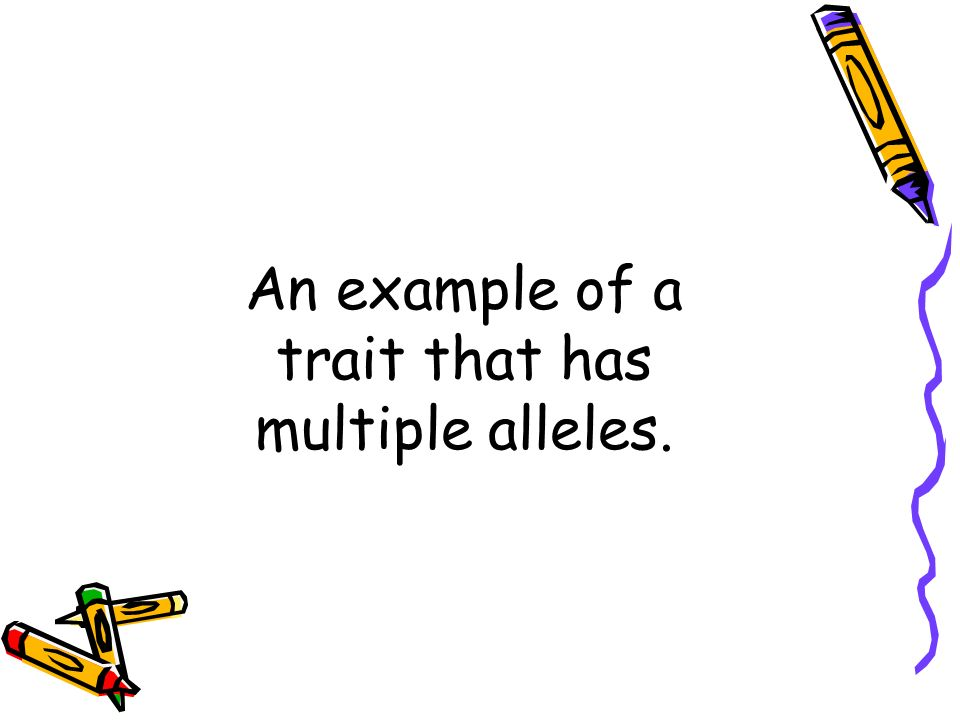 An example of a trait that has multiple alleles.