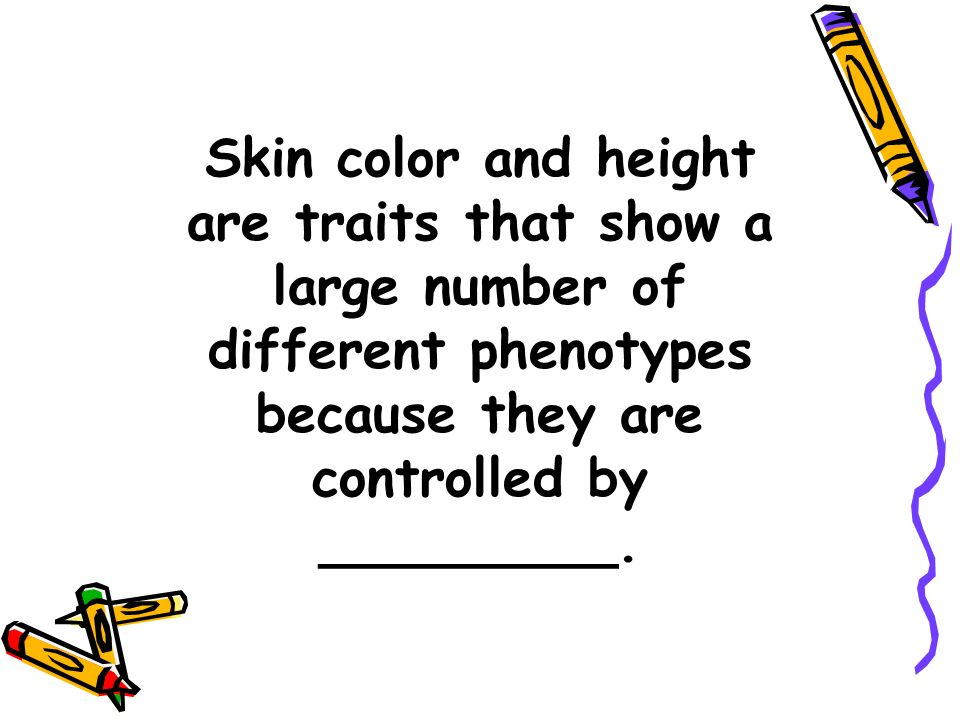 Skin color and height are traits that show a large number of different phenotypes because they are controlled by _________.