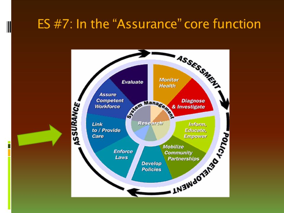 ES #7: In the Assurance core function