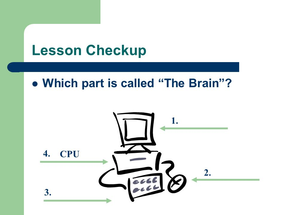 Lesson Checkup Which part is called The Brain CPU